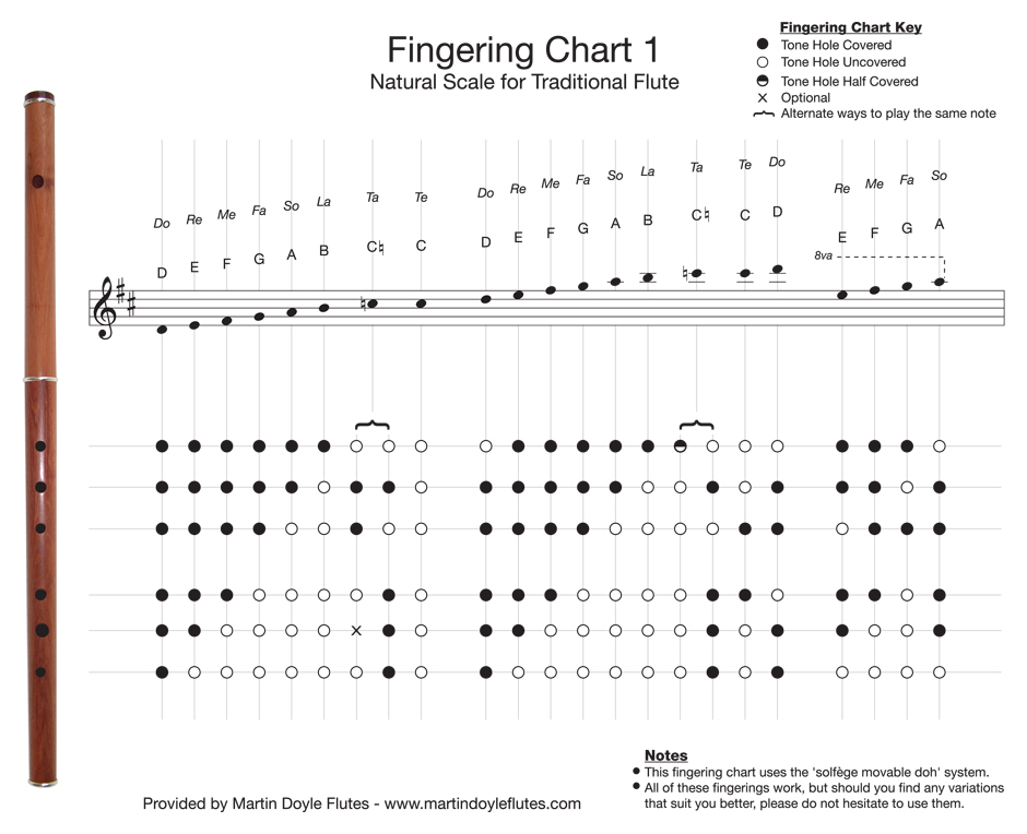 photograph regarding Printable Flute Finger Chart named Fingering Charts For Keyless D Flutes Martin Doyle Flutes