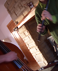 Double bass (Frank Healy) and flute (Martin Doyle) in action.